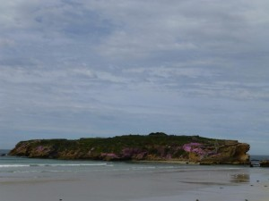 Middle Island, Warrnambool