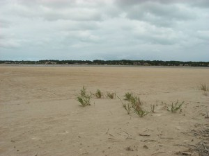 Dry times – Goolwa channel during the drought